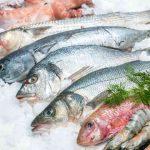 Consumo de pescado